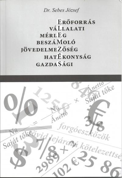Dr. Sebes József - Elemzés - Vállalatielemzés - Mérlegelemzés