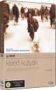 Marziyeh Meshkini - Kivert kutyák - DVD