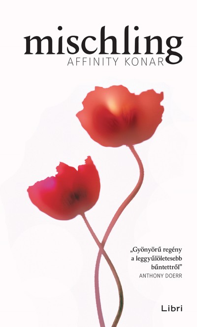 Affinity Konar - Mischling