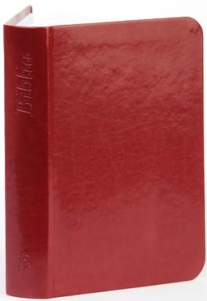 - Biblia, nagy m�ret (bord� - egyszer�)