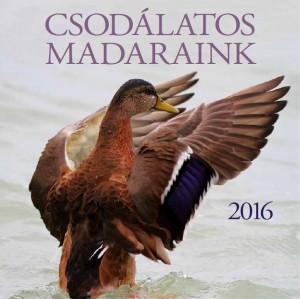- Csod�latos madaraink 2016 Napt�r