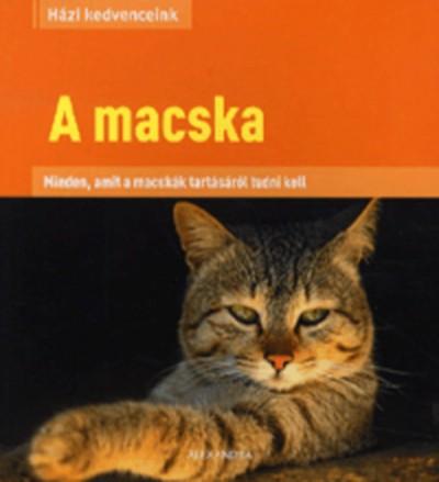 - A macska