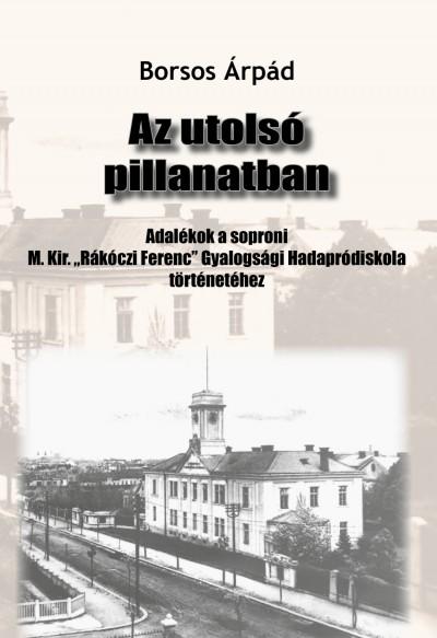 Borsos Árpád - Az utolsó pillanatban