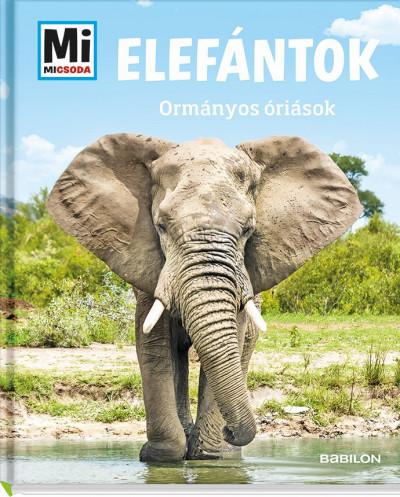 Andrea Weller-Essers - Elefántok - Ormányos óriások