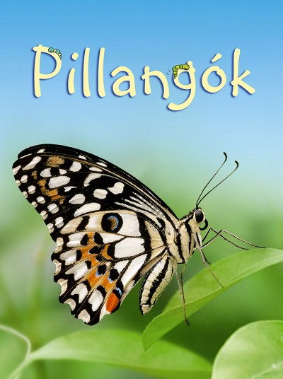Stephanie Turnbull - Kis könyvtár: Pillangók
